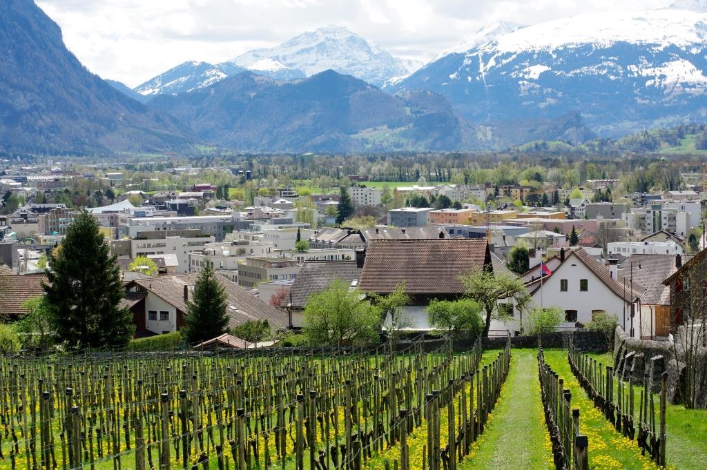 Blick-auf-Vaduz-in-Liechtenstein