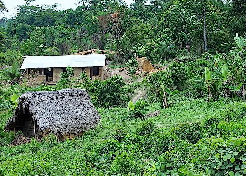 Huette-in-Liberia