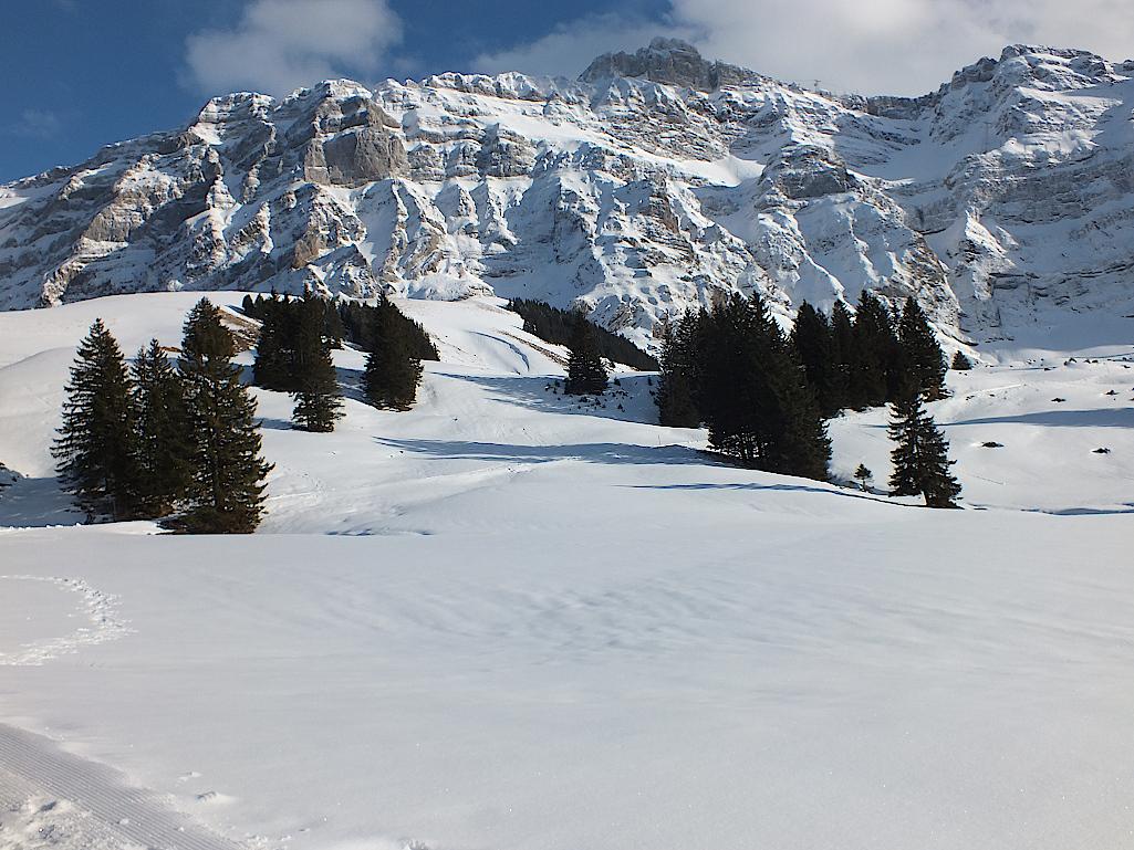 Schweiz-Saentis