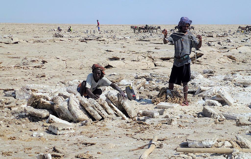 Afar beim Salzabbau auf dem Afrera-See