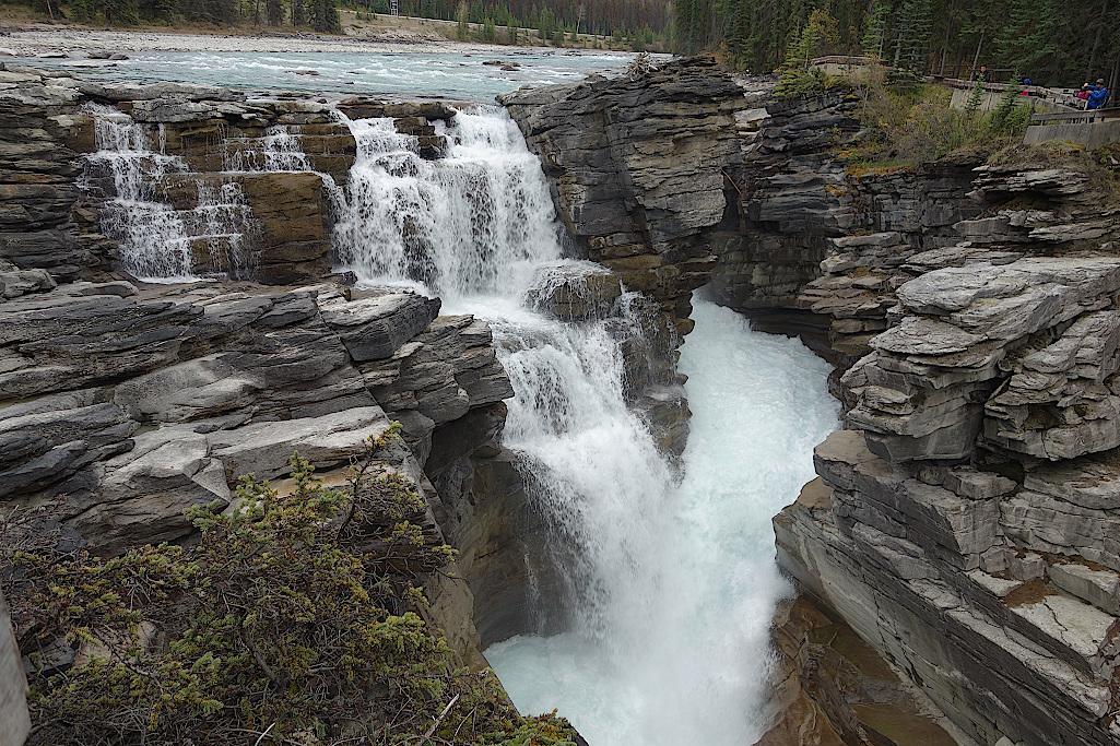 Athabasca-Wasserfaelle