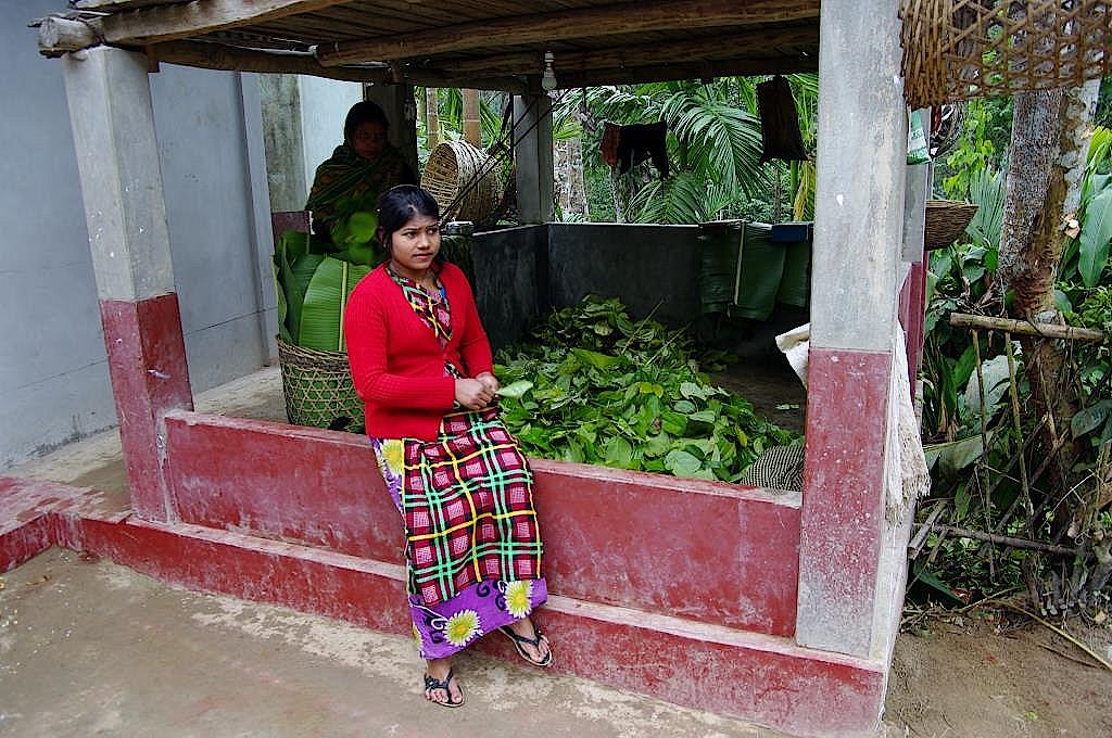 Frau beim Packen von Betelblättern