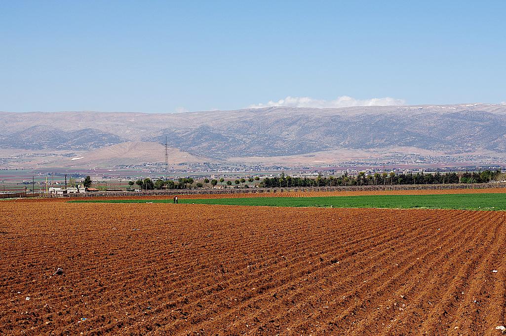 Bekaa-Ebene-Libanon
