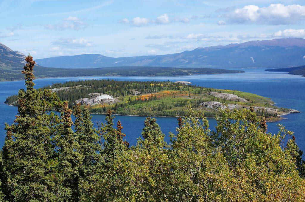 Bove-Island-im-Tagish-Lake