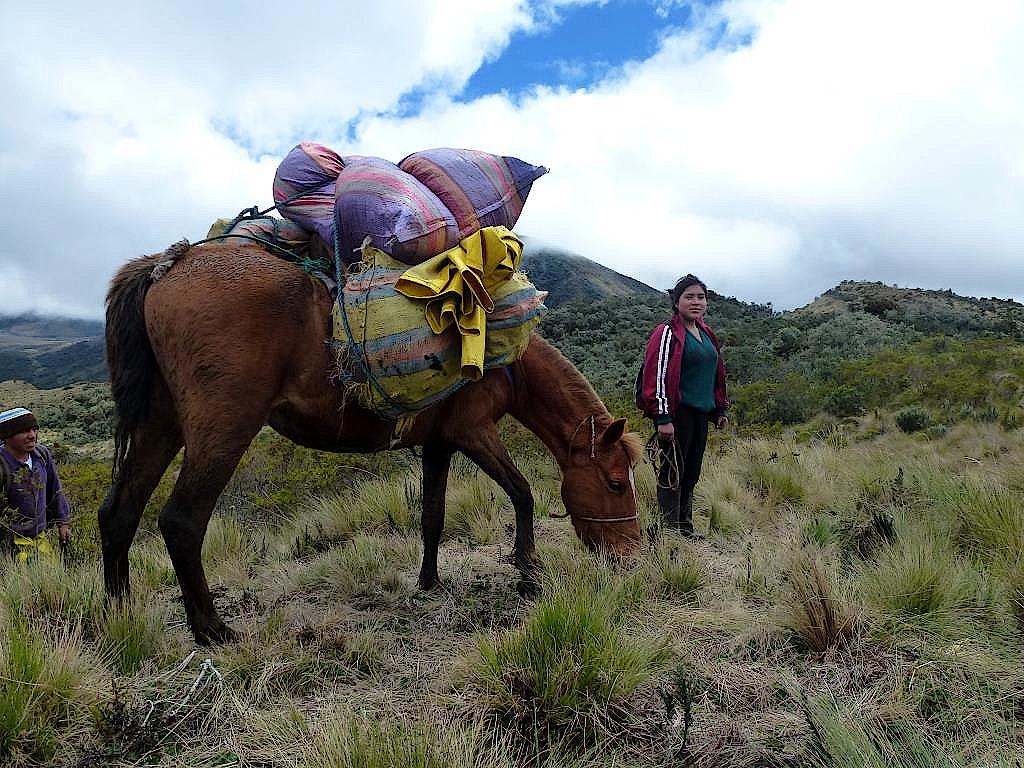 Alfredo und seine Frau mit einem Packpferd