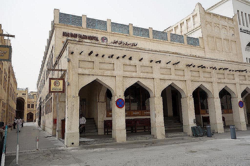 Falkenkrankenhaus-Katar