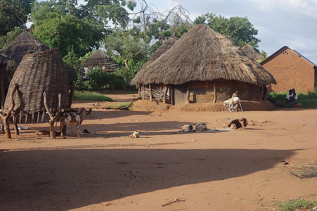 Dorf-Karamojong-Uganda