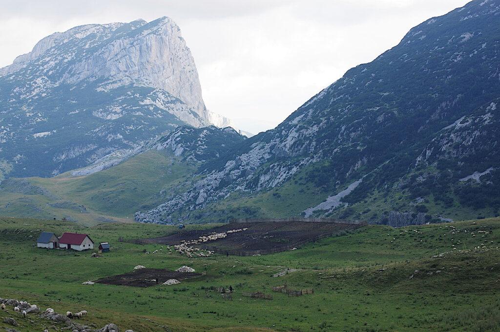 Panoramastrasse-im-Durmitor-Nationalpark