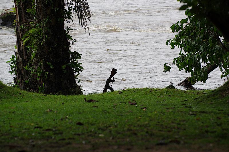 Fluss-Epulu-DR-Kongo
