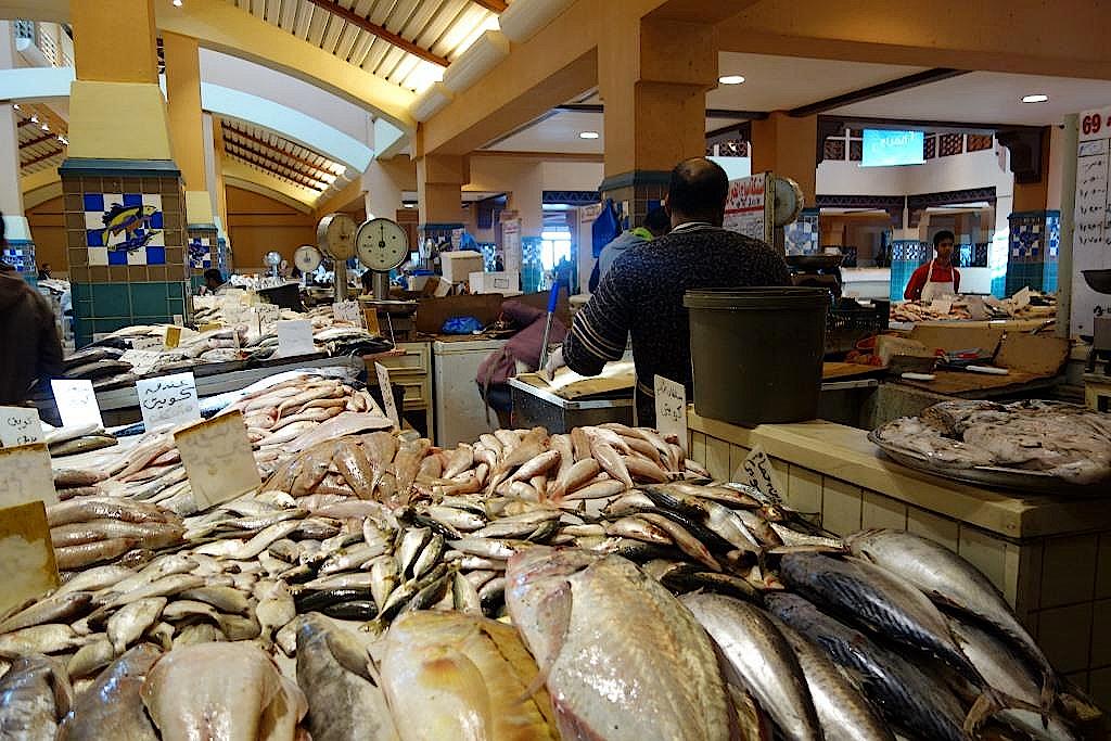 Fischmarkt-in-Fahaheel-Kuwait