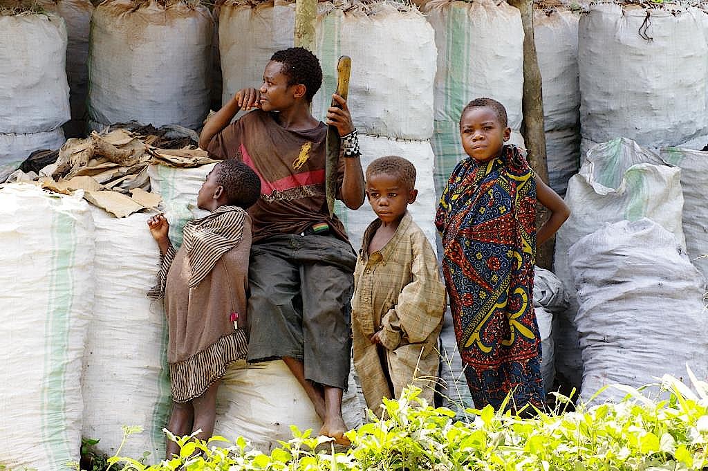Kongo-Pygmaeen