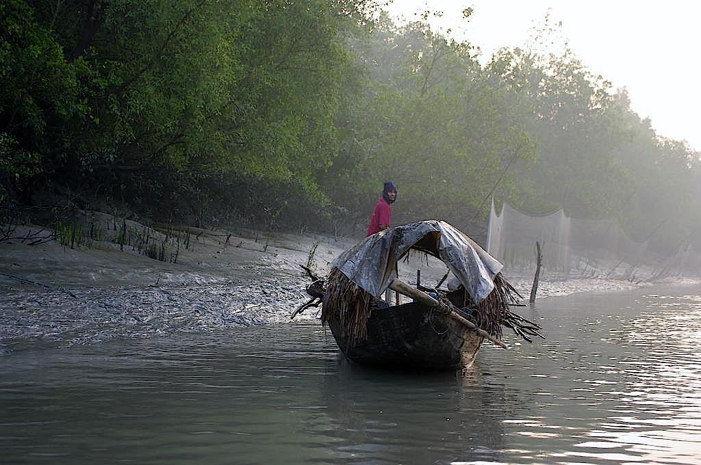 Fischer-im-Morgennebel-in-den-Sundarbans