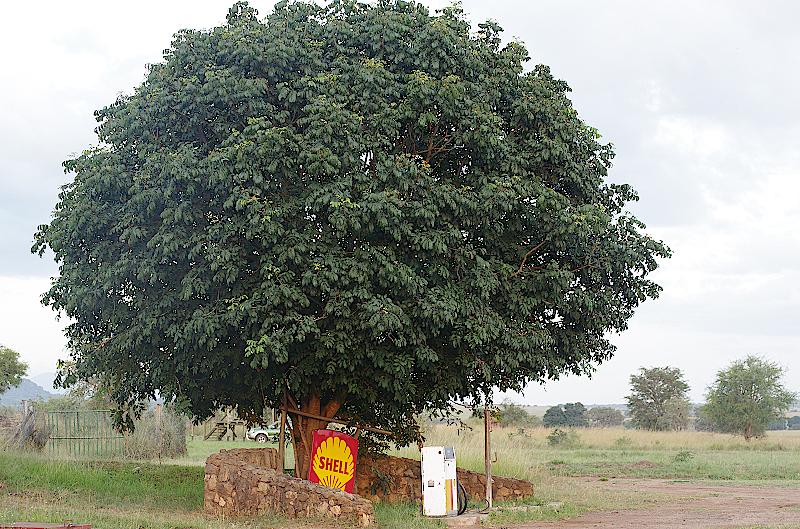 Tanken-im-Kidepo-Nationalpark-Uganda