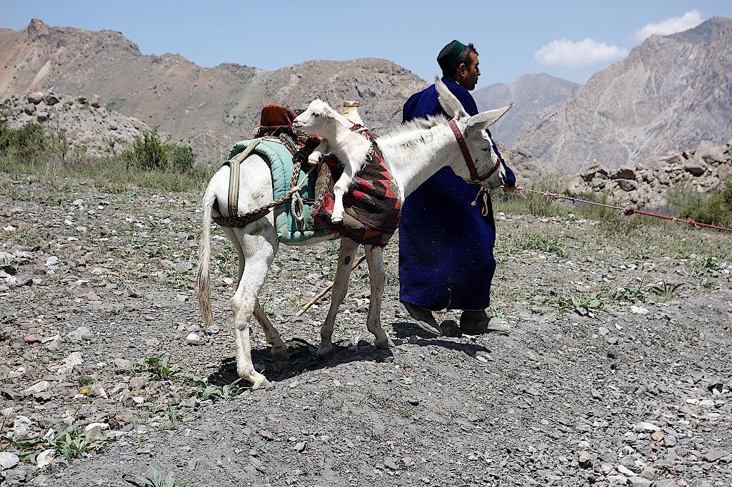 Mann mit Pferd und Zicklein in den Satteltaschen