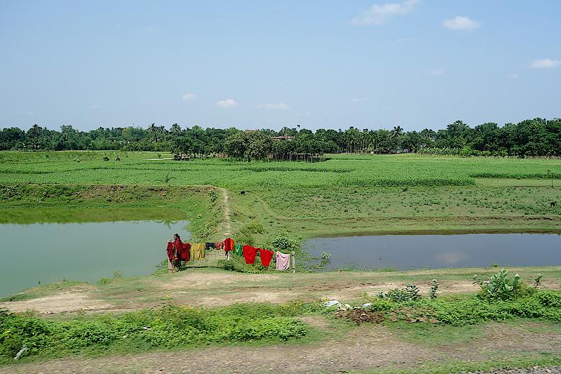 Blick aus dem Zugfenster auf grüne Felder und eine Wäscheleine