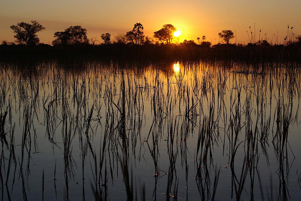Sonnenuntergang-im-Okavangodelta